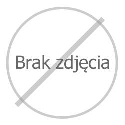 """Płyta chodnikowa """"Czerwony Księżyc"""""""